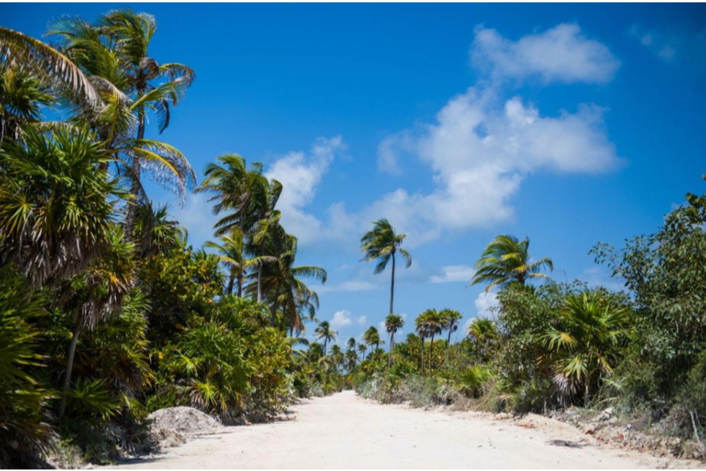 tulum villas on the beach